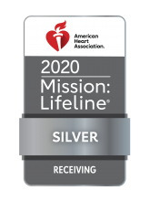 2020 Mission Lifeline Silver badge